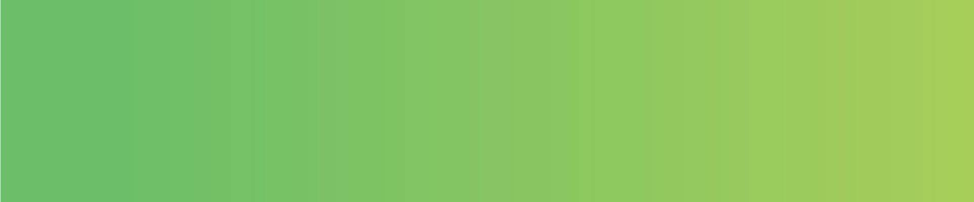 fondo-informatica-verde